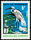 Great Egret Ardea alba  1971 Birds