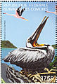 Brown Pelican Pelecanus occidentalis  1999 Protection of the worlds environment 4v sheet