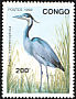 Black-headed Heron Ardea melanocephala