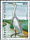 Great Egret Ardea alba  2001 Herons and storks