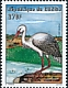 White Stork Ciconia ciconia  2001 Herons and storks