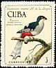 Cuban Trogon Priotelus temnurus