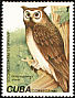 Extinct Owl sp Ornimegalonyx oteroi