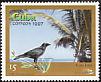 Cuban Crow Corvus nasicus