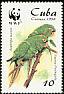 Cuban Parakeet Aratinga euops