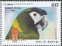 Golden-collared Macaw Primolius auricollis