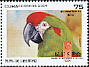 Red-fronted Macaw Ara rubrogenys