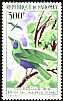 Emerald Starling Lamprotornis iris  1966 Birds