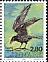 Northern Raven Corvus corax