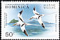 White-tailed Tropicbird Phaethon lepturus  1979 Marine wildlife 6v set