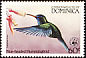 Blue-headed Hummingbird Cyanophaia bicolor  1984 WWF