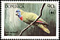 Red-necked Amazon Amazona arausiaca  1984 WWF