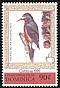 Puerto Rican Woodpecker Melanerpes portoricensis
