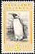 King Penguin Aptenodytes patagonicus  1933 British administration