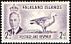 Upland Goose Chloephaga picta  1952 Definitives, George VI