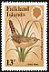 Grass Wren Cistothorus platensis
