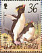 Southern Rockhopper Penguin Eudyptes chrysocome  2002 WWF, penguins