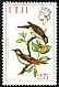 Kadavu Honeyeater Xanthotis provocator  1971 Birds and flowers Upright wmk