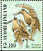 Eurasian Woodcock Scolopax rusticola  1996 Shorebirds Sheet