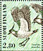 Northern Lapwing Vanellus vanellus  1996 Shorebirds Sheet