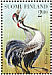 Common Crane Grus grus  1997 The Crane Sheet