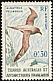 Light-mantled Albatross Phoebetria palpebrata  1959 Definitives