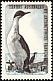 Kerguelen Shag Leucocarbo verrucosus  1959 Definitives