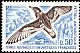 Antarctic Petrel Thalassoica antarctica  1976 Definitives
