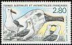 Atlantic Yellow-nosed Albatross Thalassarche chlororhynchos  1990 Yellow-nosed Albatrosses