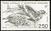 Brown Skua Stercorarius antarcticus  1993 Commemoratives
