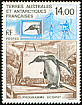 King Penguin Aptenodytes patagonicus  1993 Commemoratives