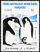 Emperor Penguin Aptenodytes forsteri  2002 Transition to Euro
