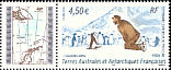 Adelie Penguin Pygoscelis adeliae  2005 Centenary of French expedition