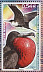 Great Frigatebird Fregata minor  2008 Birds Sheet