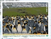 King Penguin Aptenodytes patagonicus  2020 World heritage site 3x4 stamps booklet