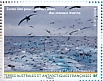 Black-browed Albatross Thalassarche melanophris  2020 World heritage site 3x4 stamps booklet