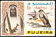 Lanner Falcon Falco biarmicus  1965 Definitives