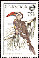 Northern Red-billed Hornbill Tockus erythrorhynchus