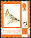 Eurasian Hoopoe Upupa epops  1977 Definitives