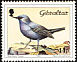 Blue Rock Thrush Monticola solitarius  1988 Birds