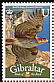 Bonelli's Eagle Aquila fasciata  2008 Bird definitives