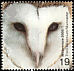 Western Barn Owl Tyto alba  2000 Millennium 2000, above and beyond 4v set