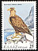 White-tailed Eagle Haliaeetus albicilla  1979 Endangered birds