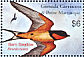 Barn Swallow Hirundo rustica  2003 Birds of the world