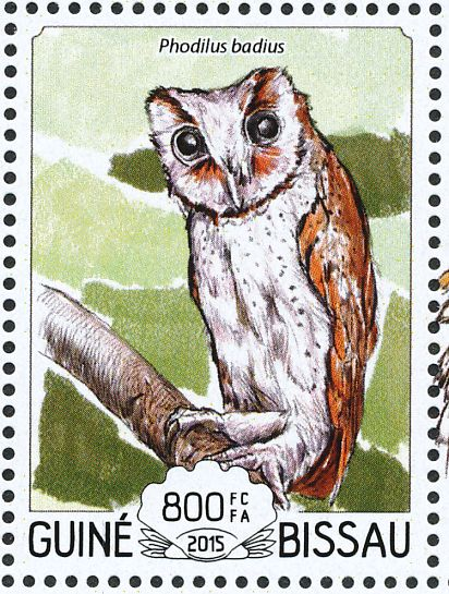 oriental bay owl stamps mainly images gallery format