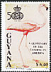 American Flamingo Phoenicopterus ruber  1991 Centenary of the landing in America
