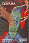 Sparkling Violetear Colibri coruscans