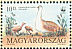 Great Bustard Otis tarda  1994 WWF, Great Bustard