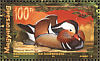 Mandarin Duck Aix galericulata  1999 Asiatic animals