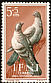 Rock Dove Columba livia  1957 Child welfare fund